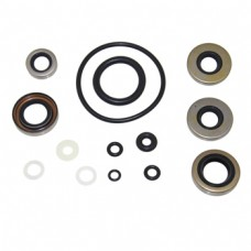 Kit de Retenes de Pata Johnson/Evinrude 9.9-15hp